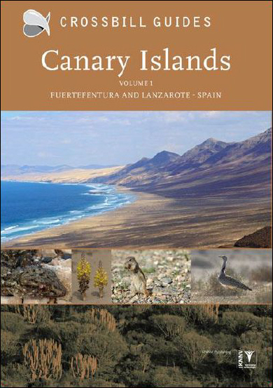 Canary Islands Volume 1 - Lanzarotte and Fuerteventura