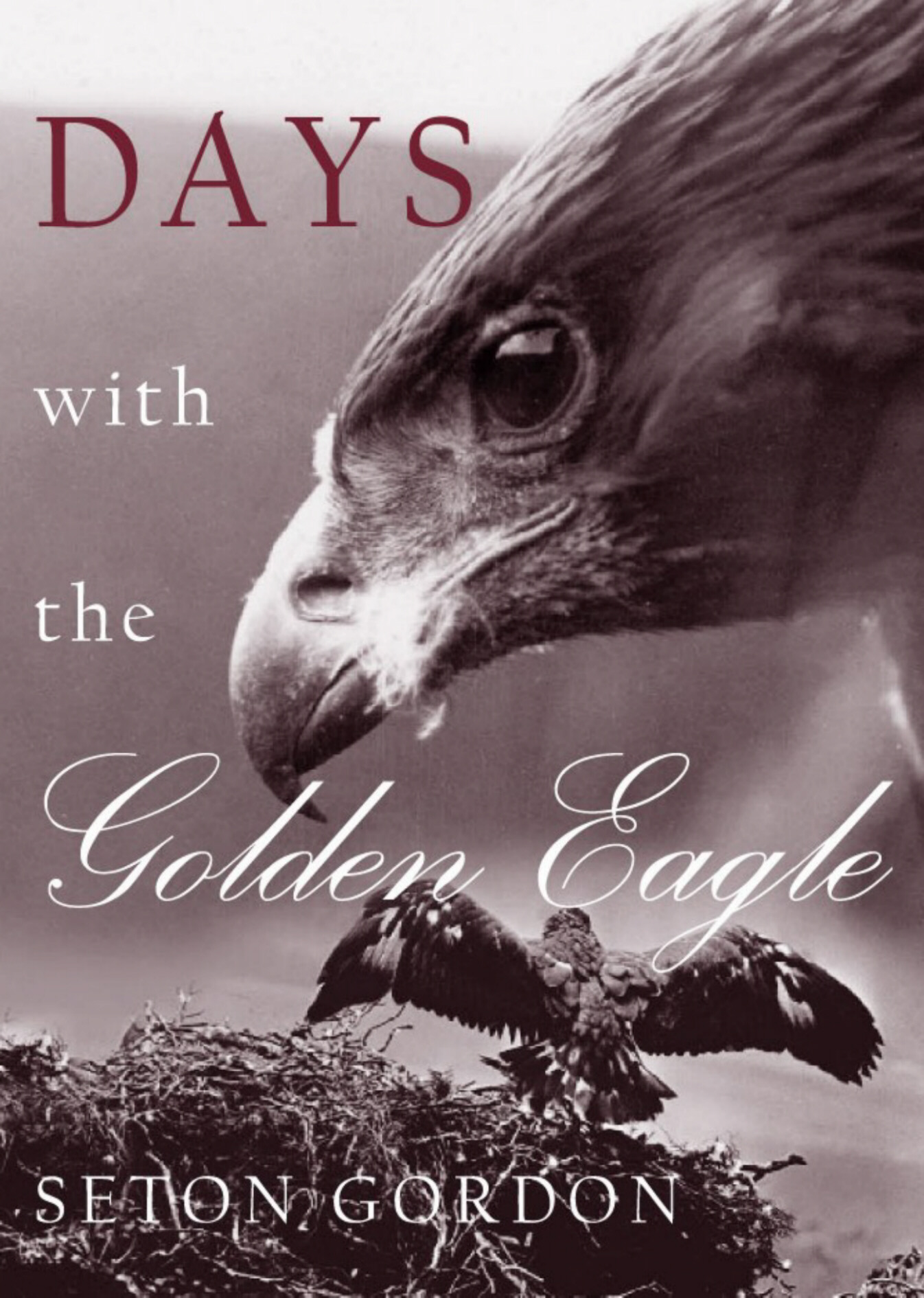 Days with the Golden Eagle, Seton Gordon