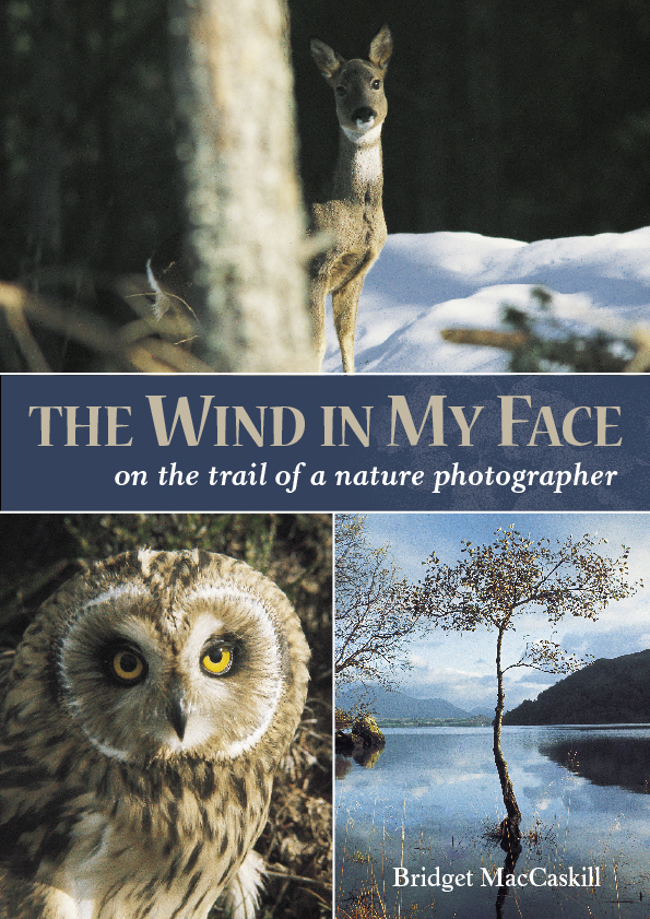 The Wind in My Face, Bridget MacCaskill