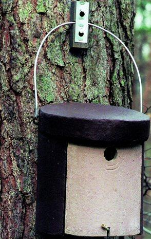 Woodcrete 5KL Nuthatch Nestbox