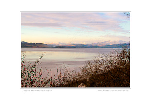 Beauly Firth in Winter