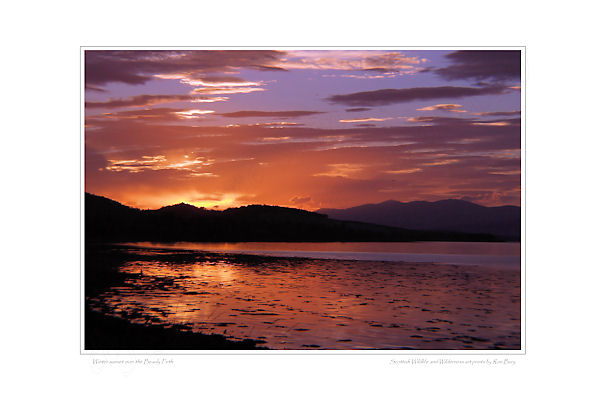 Beauly Firth sunset